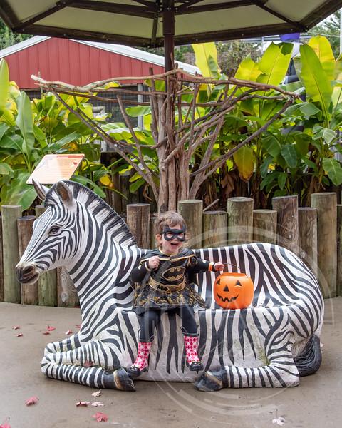 2018 Boo at the Zoo_4.jpg