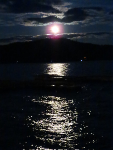 Pics from Lake George vaca