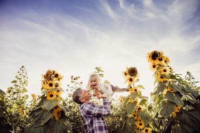 Rypinski Sunflowers 2018