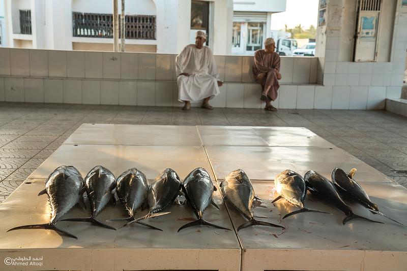 DSC04824- fish market - Muscat.jpg
