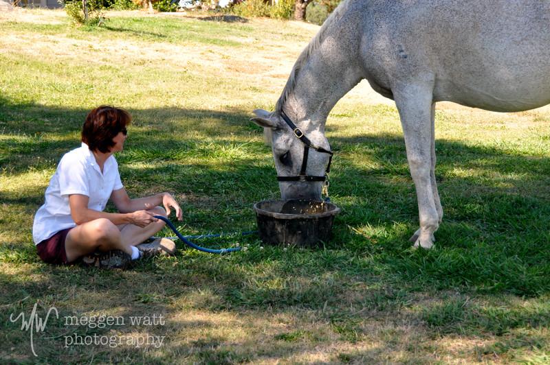 EB&Horses-017.jpg