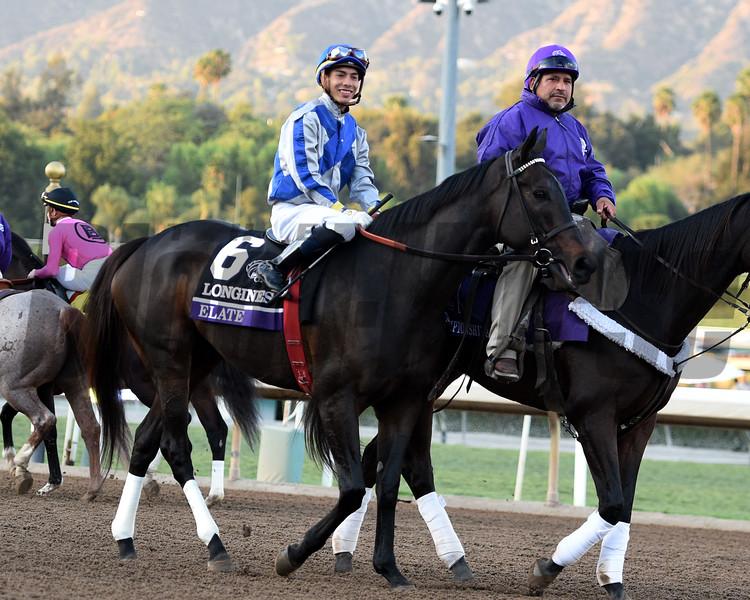 Race12BreedersCupClassic283669ELATE-DWH.JPEG