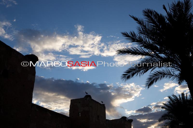 0249-Marocco-012.jpg