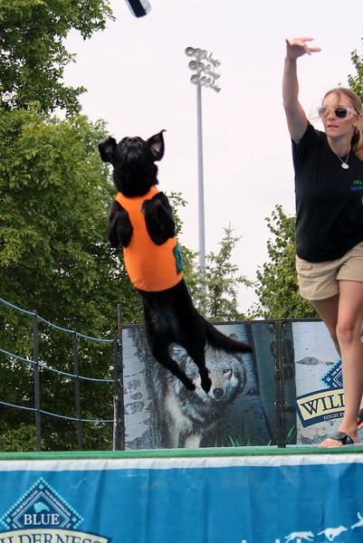 Dock Dogs at Fair-070.JPG