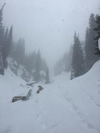 Rocky Mountain National Park Snowshoe - Jane Pelletier