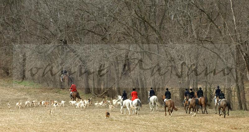 Blue Ridge Hunt at Locust Hill 3-24-15