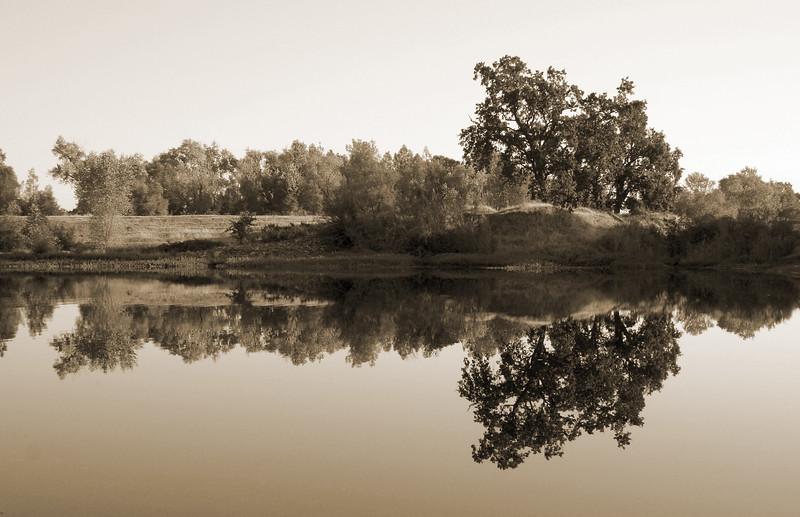 Kapusta Pond Reflections