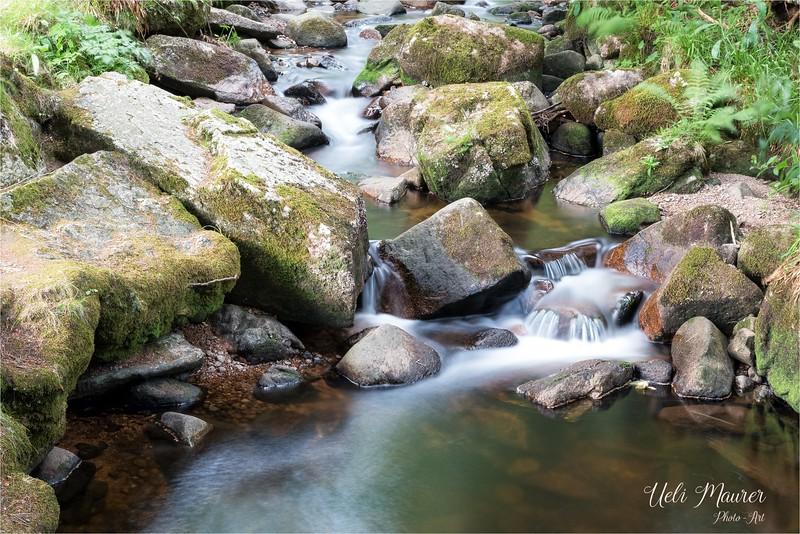 Fotoausflug Wasserfall Menzenschwand - 2015-07-15 - 1305.jpg
