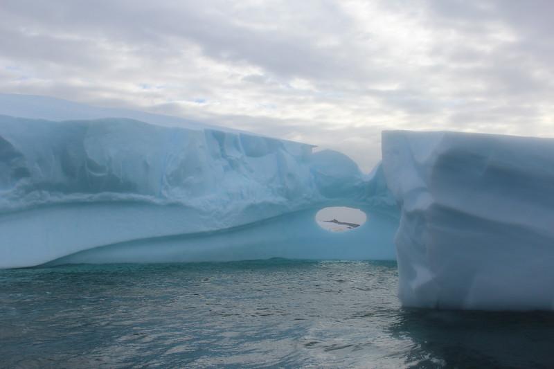Antarctica 184.JPG