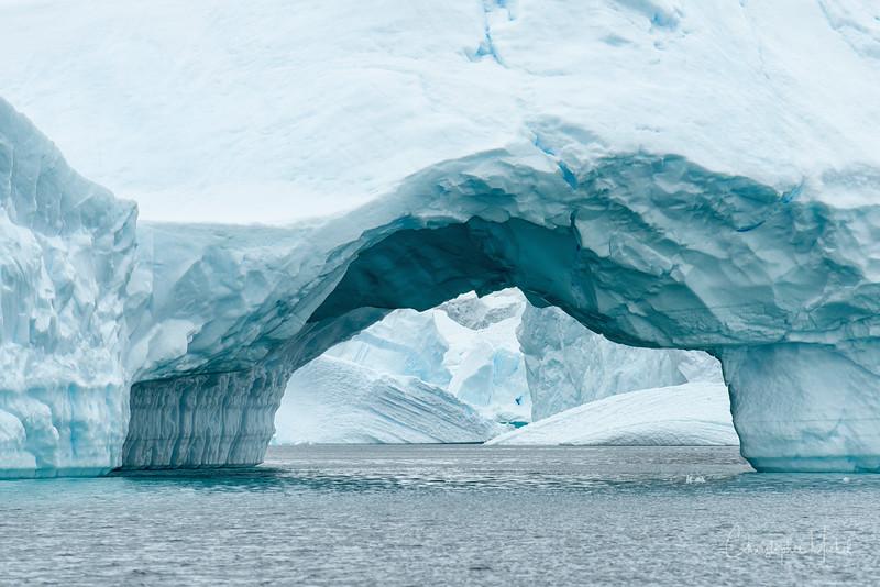 icebergs_pleneau_island_lemaire_20130106_8019.jpg