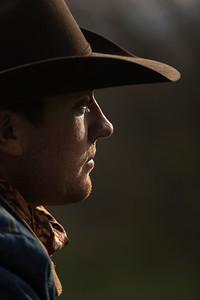 Cowboys 'n Horses