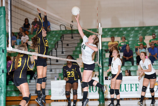 Hokes Bluff JV v. Cherokee County, October 10, 2013