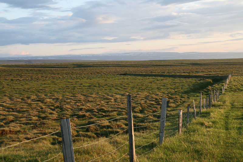 Big pastures. No trees. Mountains in the distance.