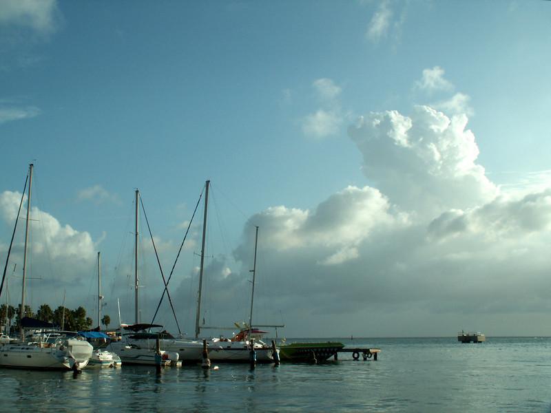 Aruba068 copy.jpg