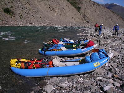 Bear Chase 08 - Kongakut River
