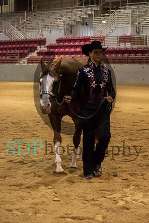 Holmes Open Horse Show 7/15/17