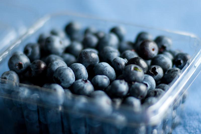 Blueberries 20100710 002.jpg