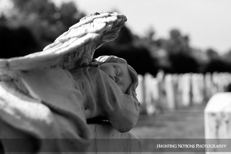 Safe & Secure (Clinton Grove Cemetery, Clinton Township MI)