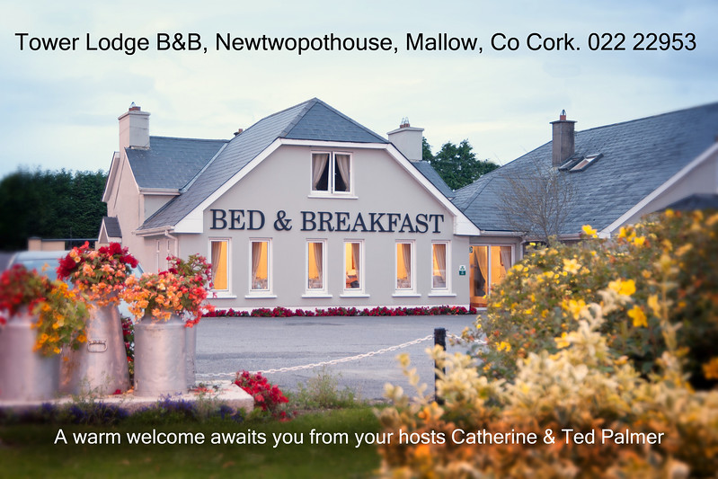 Tower Lodge B&B Ad.JPG