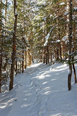 2017-12-20 Mont St-Anne-Centre de ski de fond (Jean Poirier)