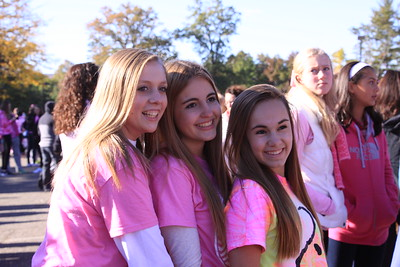 2015 Breast Cancer Walk