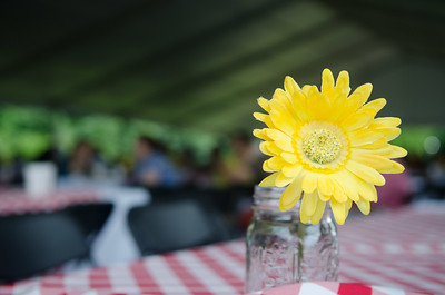 2013 Corporate Operations Picnic