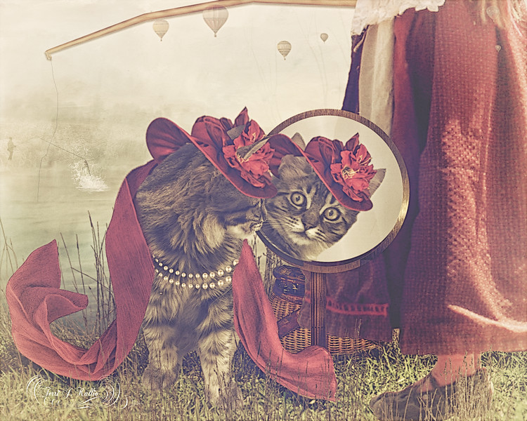 Kallio Cat dress up party composite july 2017 for contest_edited-1.jpg