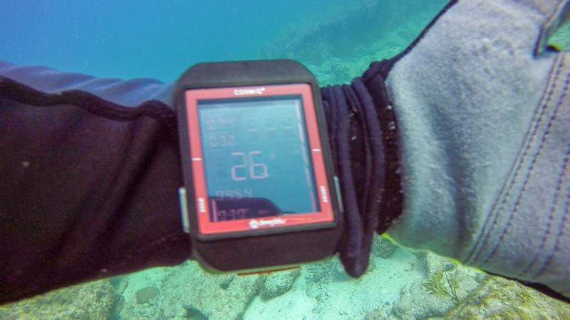 Ciesla-GOPR6586 - KC Watch.jpg
