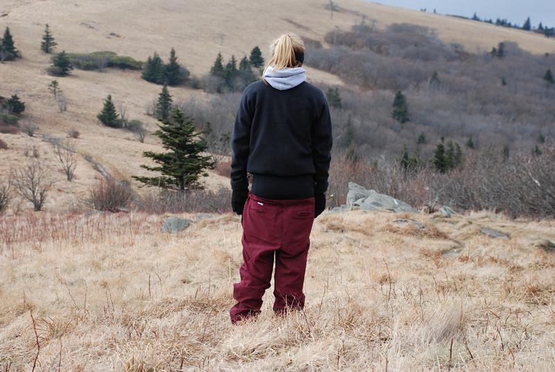 0901_roan mountain_006.jpg