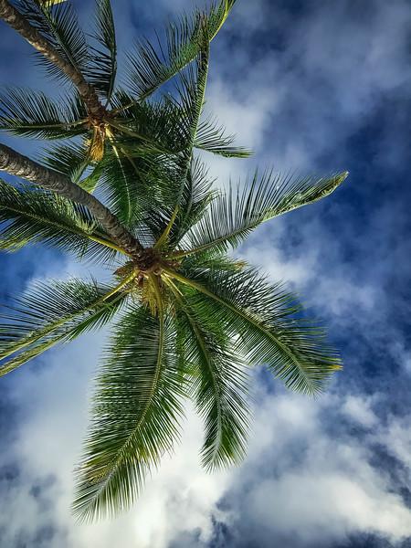 Hawaii-176.jpg