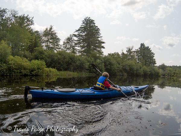Kayaking and Bees
