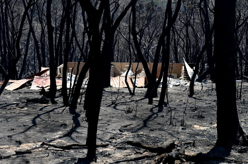 """. A burnt out house sits amongst blackened trees in Mount Victoria in the Blue Mountains on October 21, 2013, as volunteer fire brigades race to tame an enormous blaze with officials warning it could merge with others to create a \""""mega-fire\"""" if weather conditions worsen.   AFP PHOTO/William WEST/AFP/Getty Images"""