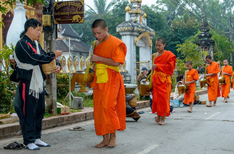 """The monks of the monasteries in Luang """"parade"""" around the town at dawn receiving alms. Generally, people place sticky rice in their alms bowls, but there are other gifts as well. The monks also give excess rice to people who are in need."""