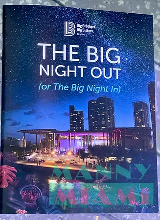 5-8-21- BBBS The Big Night Out Gala