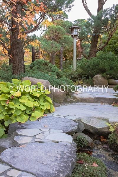 Anderson Japanese Gardens Fall '16-4.jpg