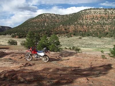 Zuni Mountains - Copperton-Sawyer-Notches-Ramah DS Ride  6-23-14