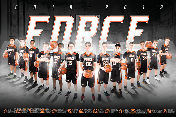 Force Basketball 2019