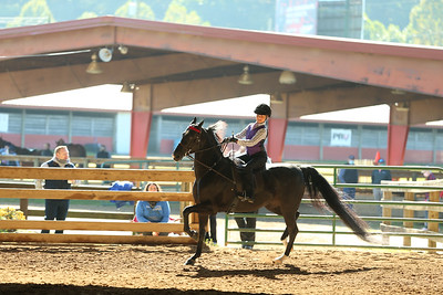 20) Academy W/T Equitation 9-10 year olds