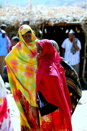 Babille Camel Market