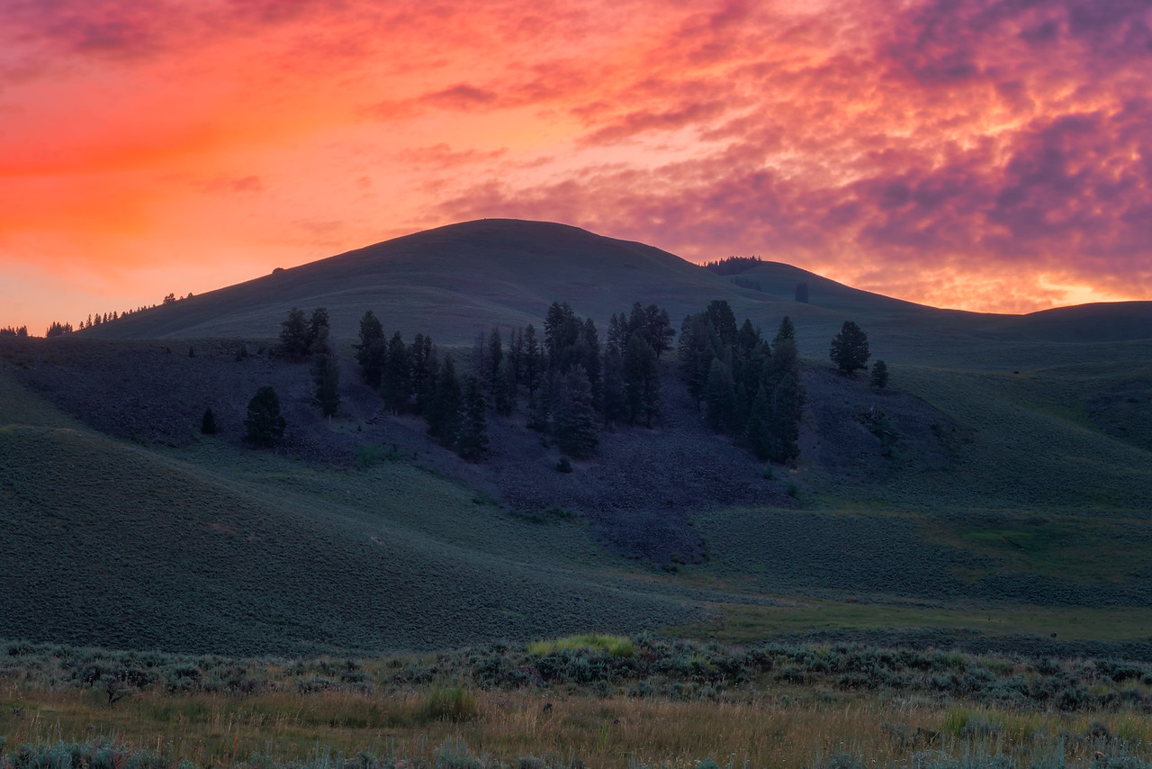 Photographing Lamar Valley Yellowstone National Park