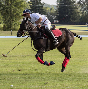Banbury Cross Polo