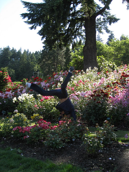 Desha Wood - Rose Gardens, Portland, Oregon