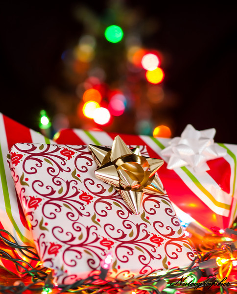 Christmas tree-019.jpg