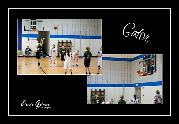 Ally Basketball 011512