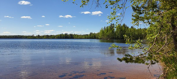 Liesjärvi NP