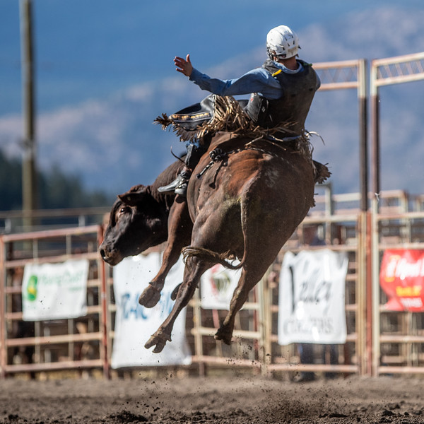 2019 Rodeo 3 (1133 of 1306).jpg