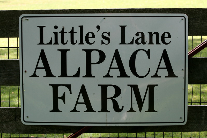 Little's Lane Alpaca Farm