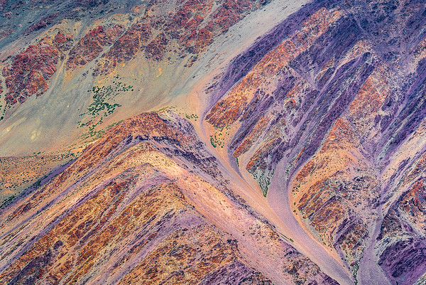 Colors of Ladakh #5