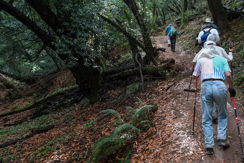 Hiking-45-8.jpg