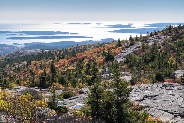 autumn color, from Cadillac Mountain